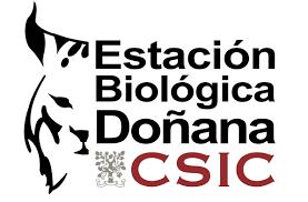 Logo Jordi